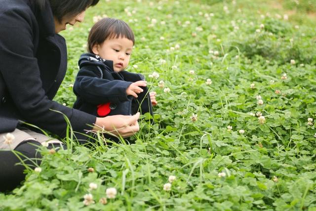 三歳前に保育園に預けて良いの?三歳児神話の影響はある?